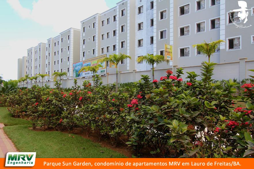 MRV - IMG_5065