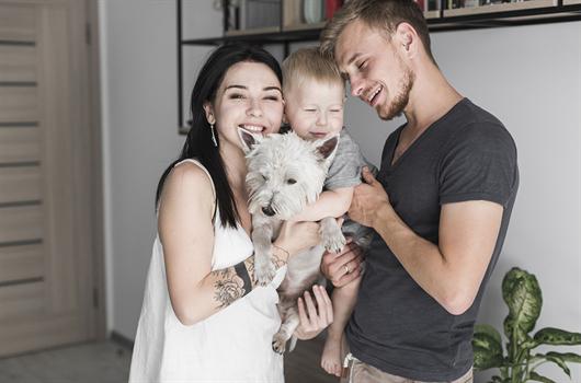 Quais são as regras para ter animais de estimação em condomínios?
